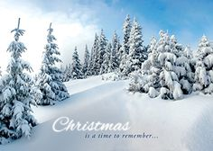 Amazon.com: White Christmas - Boxed Greeting Cards - Christmas - KJV Scripture: Health & Personal Care