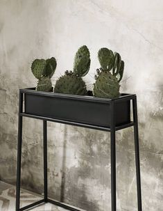 The black iron plant stand from Nordal comes in a variety of sizes and is great for indoor or outdoor use. Decor, Luxury Furniture, Iron Plant Stand, Interior, Metal Dining Table, Home Decor, Home Decor Accessories, Furniture, Eclectic Interior