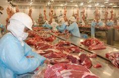 Fraude escandalosa na indústria brasileira da carne é revelada pela Polícia Federal.