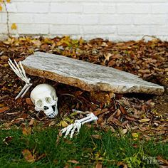 Pieces of a plastic skeleton make a creepy entrance in this simple outdoor Halloween decor idea. Make the Halloween craft: Prop up an odd-shape piece of slate at an angle. Tuck skeleton hands and skull in a pose and scatter fallen leaves around the scene. Easy Halloween Crafts, Fete Halloween, Creepy Halloween, Halloween Yard Ideas, Halloween 2017, Halloween Dishes, Classy Halloween, Halloween Graveyard, Homemade Halloween