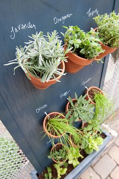 Creative Outdoor Herb Gardens • Ideas and Tutorials! Including from 'brooklyn limestone', this DIY vertical herb garden with step by step instructions.