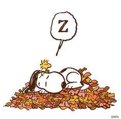 Charlie Brown Snoopy~ ☮レ o √乇 ❥ L❃ve~ ☮レ o √e