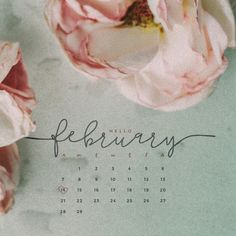 Hello February! Download this free February 2016 calendar for your computer or your phone. New calendars available every month.