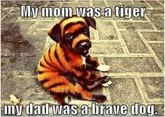 My mom was a tiger.