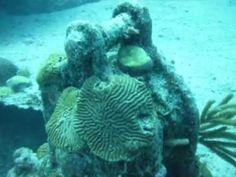 Pelinaion Wreck