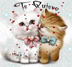 Beautiful Cats, Animals Beautiful, Hug Gif, Blur Background In Photoshop, Gato Gif, Love You Images, Love Kiss, A Cartoon, Cat Art