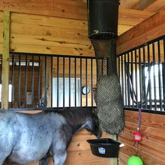Hay chute made with Rubbermaid trash can and hay chix small bale net. Drop hay from loft right into slow feed net. Barn Stalls, Horse Stalls, Horse Barn Designs, Barn Layout, Horse Barn Plans, Horse Arena, Barn Renovation, Best Barns, Dream Barn