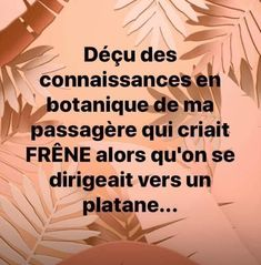 Image Citation, Lol, Have Fun, Funny, Smile, French, Don't Care, Laughter Quotes, Humor Quotes