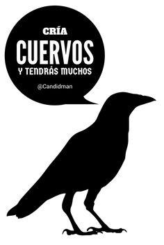"""Cría #Cuervos y tendrás muchos"". @candidman #Frases #Humor #Candidman"