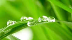 Refreshing water drops seen at Euro-Body Therapies.com