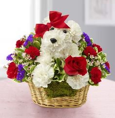 """""""Exclusive"""" our precious pup is the pick of the Valentine's litter! Handcrafted from red and white carnations, it arrives in a dog bed basket, clutching a single red rose. This romantic pooch is sure to get you a smooch! Flowers For Everyone, Flowers For Valentines Day, Valentine Roses, 800 Flowers, Cheap Flowers, Send Flowers, Single Red Rose, Anniversary Flowers, Local Florist"""