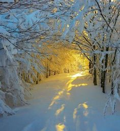 ♥ winter sunrise