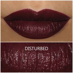 Urban Decay Vice Lipstick in Disturbed - Review and Swatch