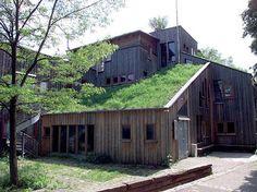 Dachbepflanzung - Dachbegrünungen halten durch die Bepflanzung