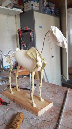 Horse armature