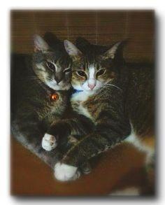 My lovely Buna & Chici