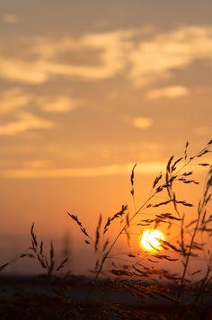 Sunset - 20/08/2012 - PENTAX SMC TAKUMAR 135mm F2.5