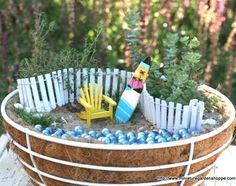 miniature garden in cocoa basket