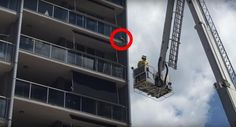 Cat 'Stuck' On Balcony Has Big Surprise For His Rescuers