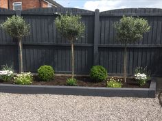Black Fencing Serves As Simple And Effective Backdrop For