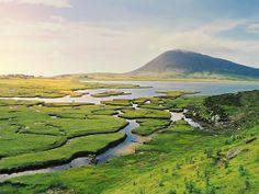 Green Scotland! Absolutely beautiful