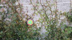 Weed leaf perler bead art