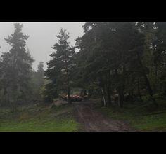 Black seasons - Part one on Behance