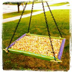 DIY Bird feeder: old picture frame, screen from old door, eye hooks & chain. Paint the frame & spray outdoor sealer on it. Staple screen to back, attach eye hooks & chain, hang it in a tree or on shepherd's hook & fill with seed. Voila!