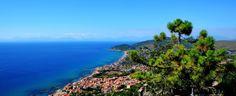 My Cilento App ...la prima guida turistica del Cilento è lo strumento ideale per vivere al meglio le tue vacanze! Scaricala per avere il Cilento a portata di touch!!!
