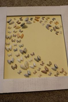 butterfly sea shell flight framed display - easy DIY!...would be cute for a little girls room with some dipped in colors to match decor