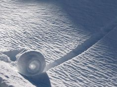Snow roller is a rare meteorological phenomenon in which large cylinders of snow are naturally formed as chunks of snow are blown along the ground by wind