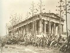 Δείτε πως ήταν η Αθήνα το 1880! Σπάνιο φωτογραφικό υλικό! Mycenae, Minoan, Ancient Beauty, Acropolis, Aesthetic Gif, Athens Greece, Ancient Greece, Crete, Back In The Day