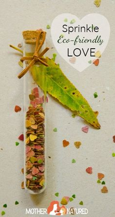 You'll fall in love with this DIY eco-friendly confetti! - Mother Natured - Naturally Chic Dinnerware - You'll fall in love with this DIY eco-friendly confetti! - Mother Natured You'll fall in love with this DIY eco-friendly confetti! Sustainable Wedding, Sustainable Living, Woodland Party, Green Wedding, Diy Wedding, Eco Wedding Ideas, Budget Wedding, Fall Wedding, Wedding Colors