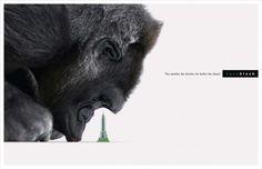 Nanoblock: Gorilla   Ads of the World™ #advertising