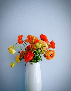 and Yellow orange flowersorange flowers Colorful Roses, Orange Flowers, My Flower, Fresh Flowers, Beautiful Flowers, Poppy Flowers, Blue Flower Arrangements, Mellow Yellow, Orange Yellow