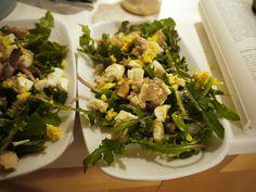 WILDCRAFT VITA: Dandelion Mimosa Salad (Taraxacum officinale)