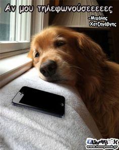 εστω ενα μηνυμα.....Well, I would say he is waiting for Grandma to call.....