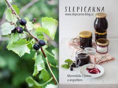 slepicarnablog-marmelada-josta-angrest