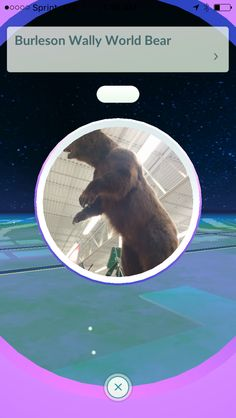 Wally World PokeStop Augmented Reality, Pokemon Go, World, Cute, Movie Posters, Kawaii, Film Poster, The World, Billboard
