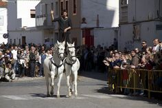 Horses at the St. Antoni Procession: Animal Blessings in Spain