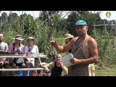 Gérer la période d'installation d'un jardin-forêt en permaculture - YouTube