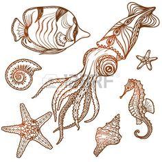 Hand drawn sea life set. Shells, starfish, seahorse, fish and..