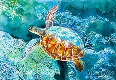 Bring the tropical seas into your home with this gorgeous Hawaiian sea turtle art print. This bright and colourful art print would make a wonderful addition to your living room, ocean-themed childrens nursery, or as a heartfelt housewarming gift for that special friend or family