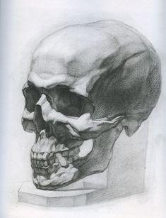 Academic Drawing