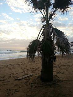 The Beach in Viña del Mar, Chile.