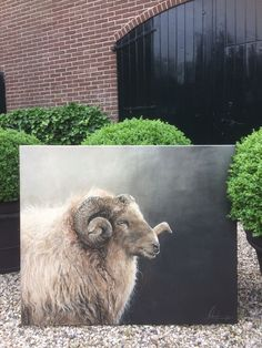 Beautifully made 👏🏻 – Gabriele Albers Sheep Paintings, Wildlife Paintings, Wildlife Art, Animal Paintings, Cow Pictures, Pictures To Paint, Goat Art, Sheep Art, Farm Art
