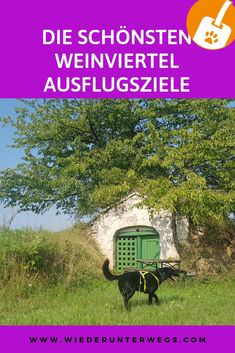Weinviertel am Weekend. Camping In Deutschland, Austria, Road Trip, Places To Visit, Journey, House Styles, Holiday, Nature, Photography