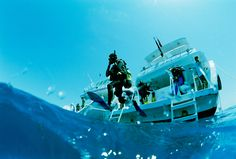 Scuba diving course in Marsa Alam, Red Sea - Egypt online tours Travel Specials, Best Scuba Diving, Knysna, Diving Course, Visit Egypt, Mexico Vacation, Adventure Activities, Koh Tao, Red Sea