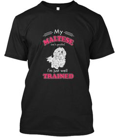 Maltese dog lovers