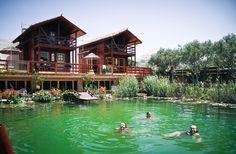 Eco swimming pool Camps, Swimming Pools, Surfing, Backyard, House Styles, Nature, Pools, Yard, Naturaleza